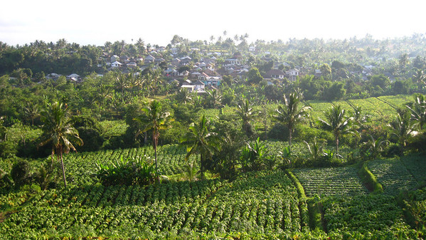 View of neighboring village from Hati Suci Homestay — Sapit, Lombok, Indonesia