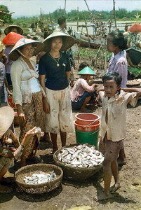 Village scene = buying fish