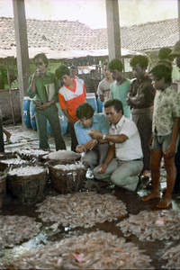 Richard and Gomal examining a shrimp catch
