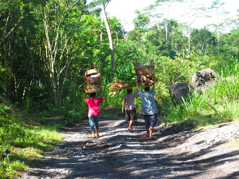 Carrying a load, Bali