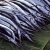 Fish on banana leaves at market, Ende, Flores, Indonesia.