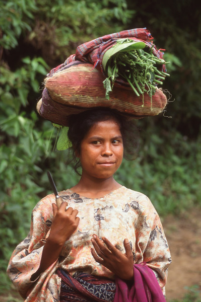 Woman walks with load on head, Flores, Indonesia.