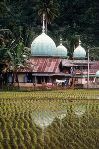 Small mosque by rice paddy, Sumatra