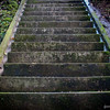The journey of a thousand steps