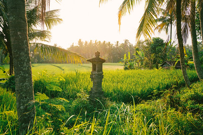 Tranquility outside of Ubud