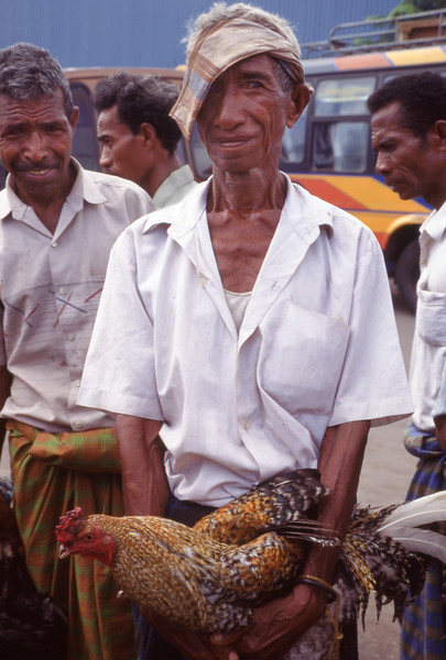 Man with rooster at market, Maumere, Flores, Indonesia.