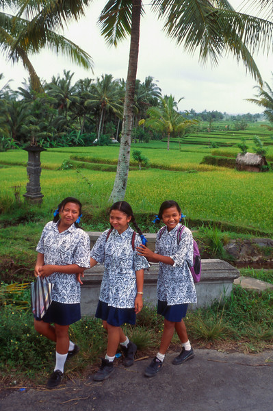 Schoolgirls walk past rice fields, Bali, Indonesia