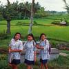 Schoolgirls walk past rice fields, Bali, Indonesia