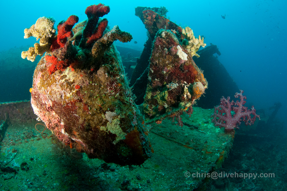WWII Landing Craft Shipwreck, Pillbox Dive Site, Manokwari, Cenderawasih Bay Indonesia