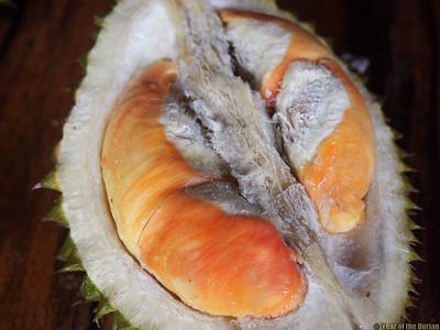 Rainbow Durian, Pelangi