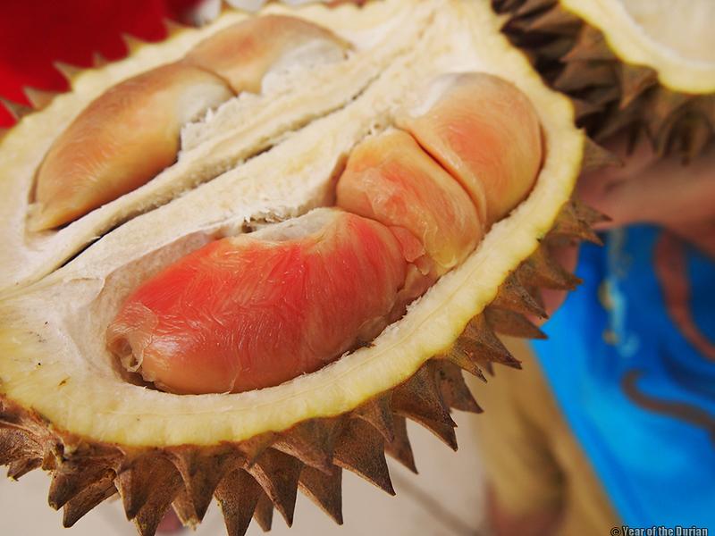 //www.yearofthedurian.com/2015/04/rainbow-durian-at-banyuwangi-frui.html