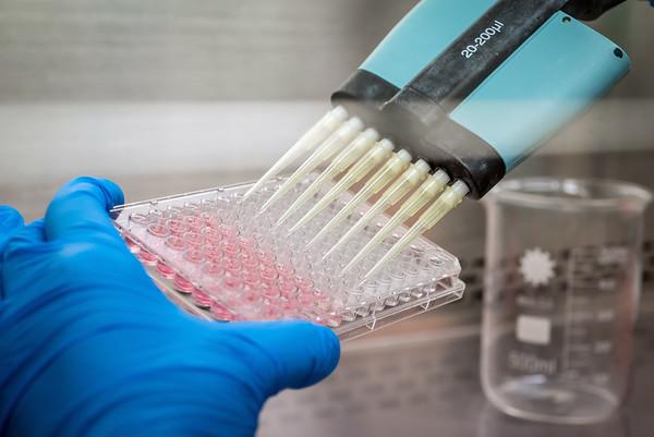 Laboratory research, Investigacion Cientifica