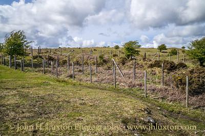 South Phoenix Mine, Minions, Cornwall - May 19, 2021