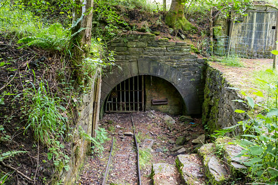 Morse's Level, Forest of Dean, Gloucestershire - July 14, 2021
