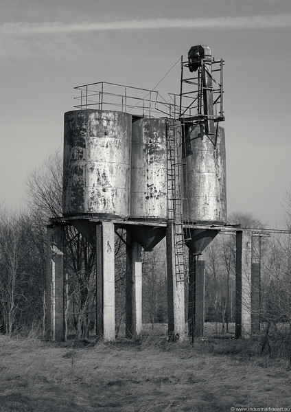 Near Liukonys