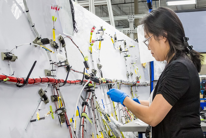 Woman technician building complex aerospace wiring harness.