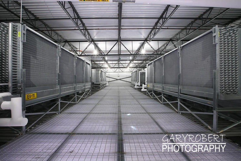 Ammonia Evaporators in Penthouse