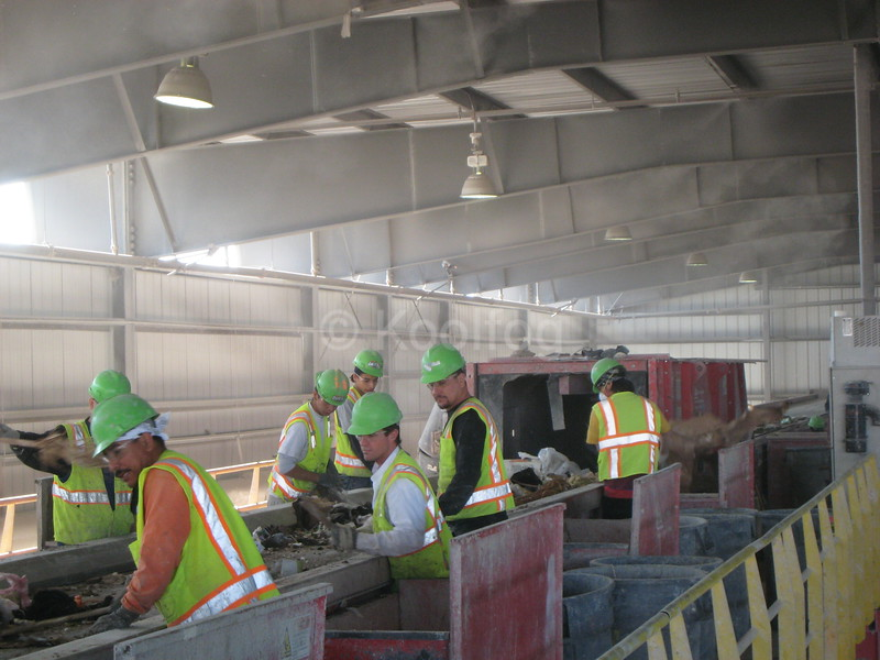 Sorting Line at Recycling Plant