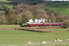 Lambs rest in the spring sunshine as Austerity 0-6-0ST (VF 5272/1945) 'Haulwen' passes Cwmdwyfran, Gwili Railway with the 1450 Bronwydd Arms to Danycoed on 5th April 2008.