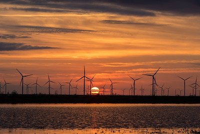 Sunrise over Wind Farm