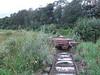 In Derrylea bog a long forgotten flat wagon rusts. Thurs 07.07.08