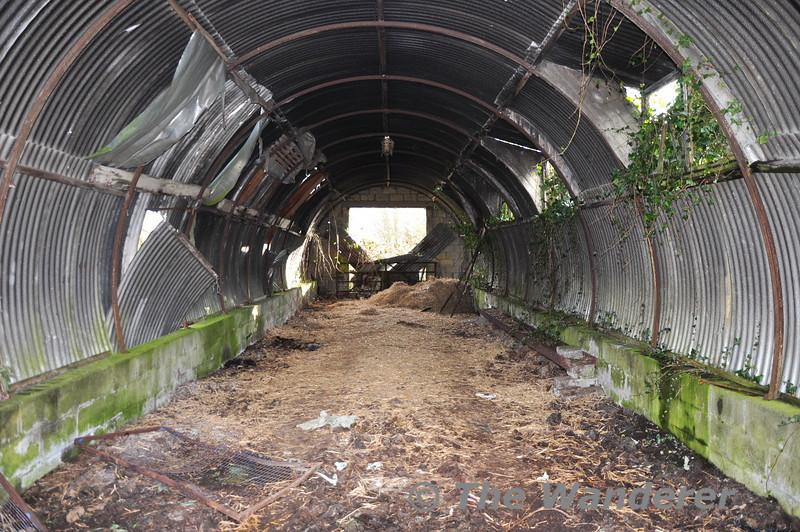 Interior of the loco shed at Cushina. Sat 27.02.10
