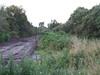 Looking along the former trackbed towards Cushina. Thurs 07.07.08