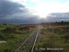 """Looking across Derryounce Bog, Co. Offaly. The foot crossing in the foreground is actually the trackbed of the former """"mainline"""" to Portarlington Power Station. Thurs 07.07.08"""