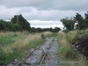 A long disused turnout which led to the former mainline formation. Thurs 07.07.08
