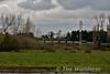 Bord na Mona Railway at Shannonbridge Power Station. Thurs 14.04.16