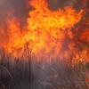 Raging Fire_SS10068