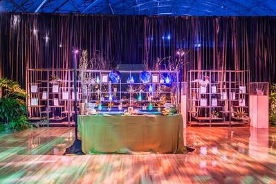 ILEA NCC Gala 2016