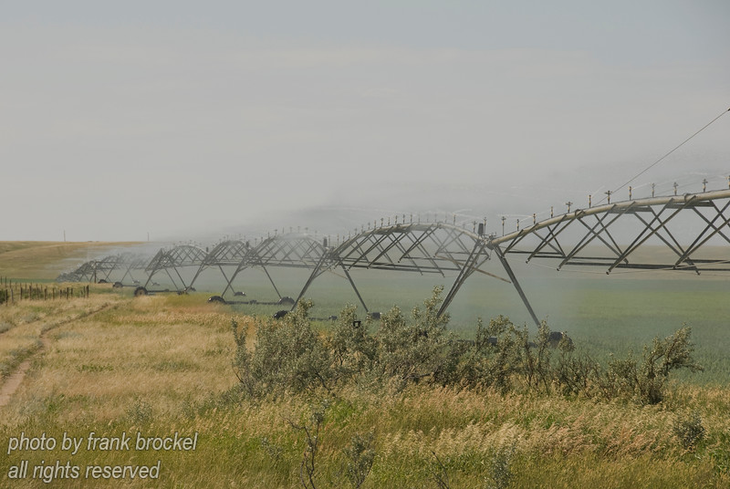 Irrigating fields in Southern Alberta
