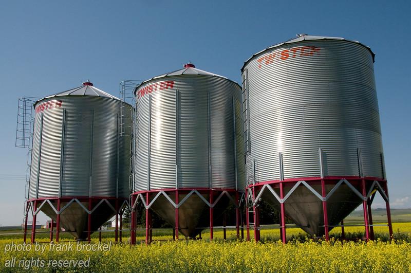 Grain silos in a Canola field.