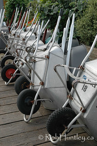 Wheelbarrows in a row.  © Rob Huntley