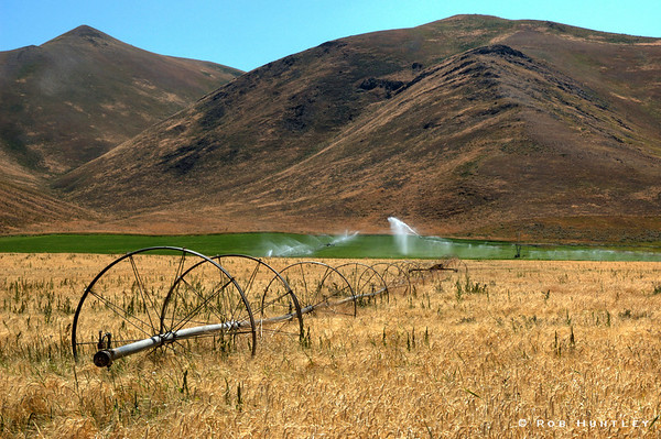 Irrigation equipment in a wheat field in the Sawtooth Mountains