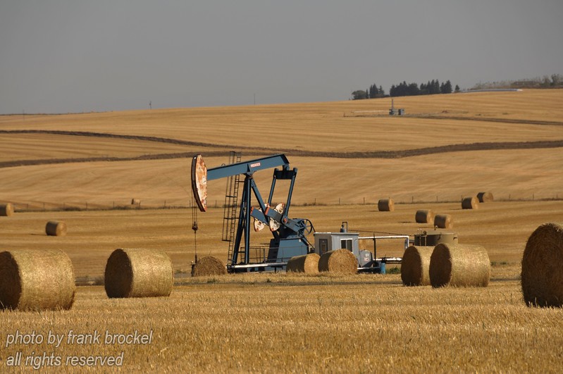 A pump jack in a field east of Kindersley, Saskatchewan
