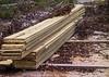 20030913 - 0985 Chain Saw Cut Lumber - Guyanese Amazon