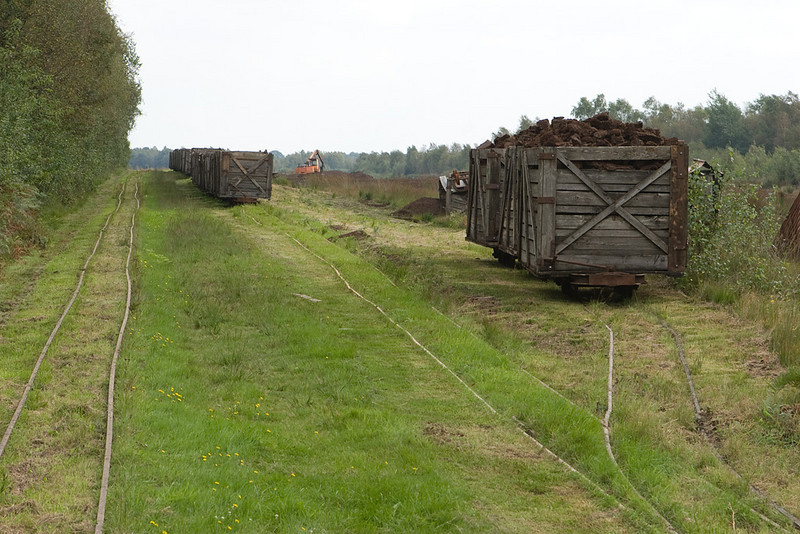 Main line (left) and loading tracks in the bog.