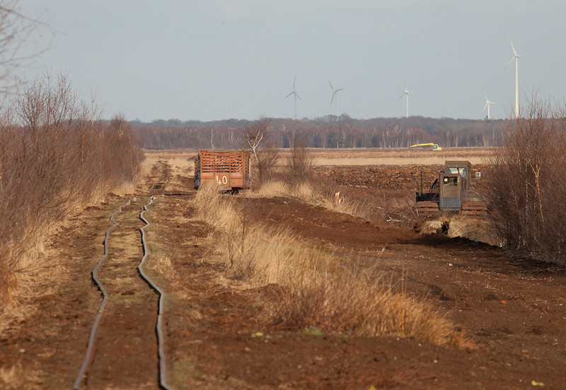 Main line, loading siding, backhoes, and a large area yet to be harvested. The track is laid on untouched peat which shows the original level of the terrain before harvesting began.