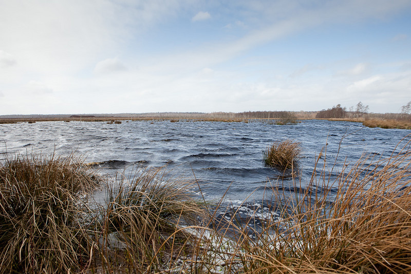 A peated-out and flooded area with angry waves in a gale-force wind.