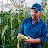 Farmer and Corn