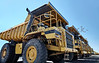 Heavy equipment row industrial mining dump trucks