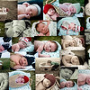 Infants : 6 galleries with 387 photos