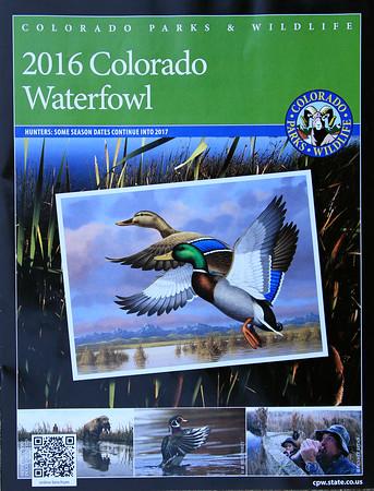 2016 Waterfowl Magazine