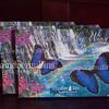 2015_leanintree_alix_butterflycardcollection