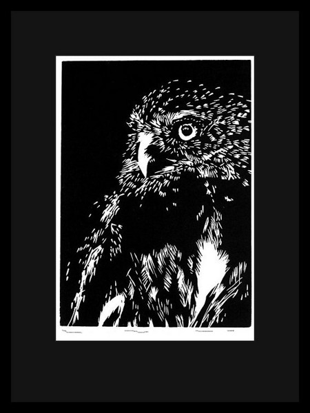 Relief print with a simple black frame and black mat.  Due to the nature of black mat material the true color of the black is more of a dark gray which helps intensify the black ink used in the print.