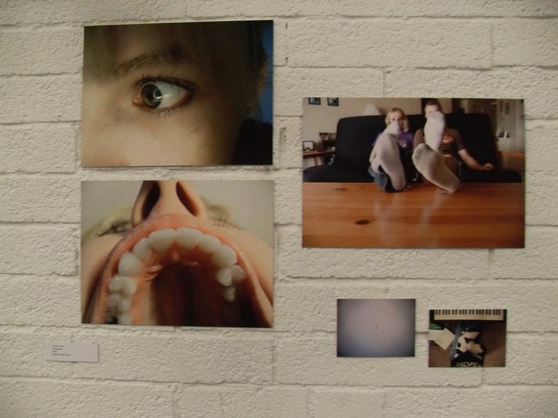 """""""Percipience"""" - 2008<br /> <br /> Gallery 100"""