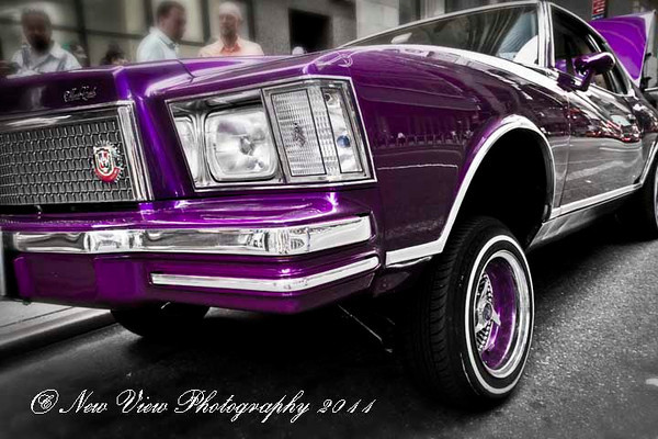 Photography by Vicki Miorelli : New View Photography -  Low Ride