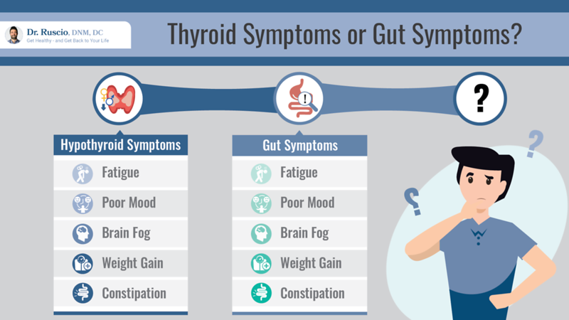 Your Research-Backed Guide to Hypothyroidism Medication - Thyroid%20Symptoms%20or%20Gut%20Symptoms 16%20x%209 Landscape L